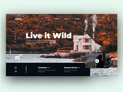 Live it Wild uxui webdesign landingpage