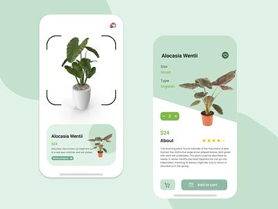 Plant Shop android ios app cart boxes scanner e-comerce nature e-commerce app shop plant figma ui minimal design