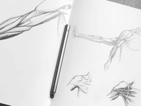 Pencil sketching with pencil+