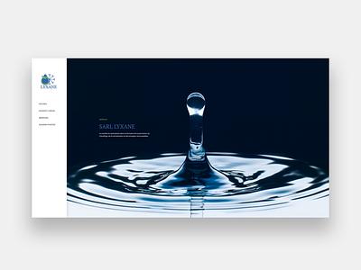 LYXANE wordpress development wordpress design wordpress webdesigner web design webdesign web integration illustration design