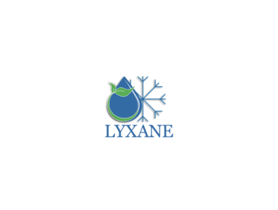 LYXANE logo branding illustration design logo