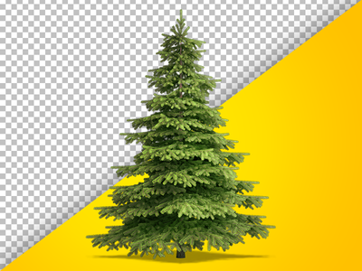 Fully Isolated Christmas Tree cut out spruce green needles christmas render psd highres isolated fir christamas tree