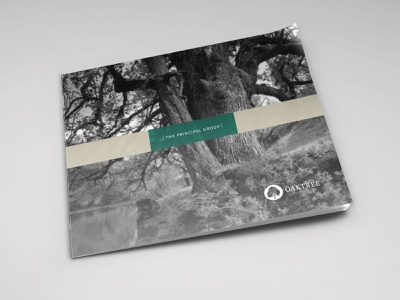 Oaktree illustration