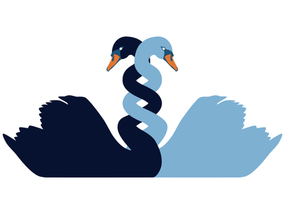 DNA swans harmony unity connected swan design vector illustration
