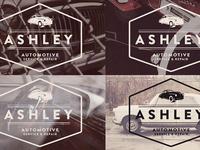 Ashley Options