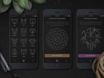 Chinese Horoscope ios application bamboo fortune star signs sign zodiac astrology subscription cookie illustration icons cx ui ux space stars prediction universe