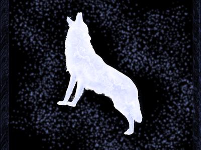 Live like a WOLF WILD.