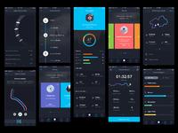 Ski app overview