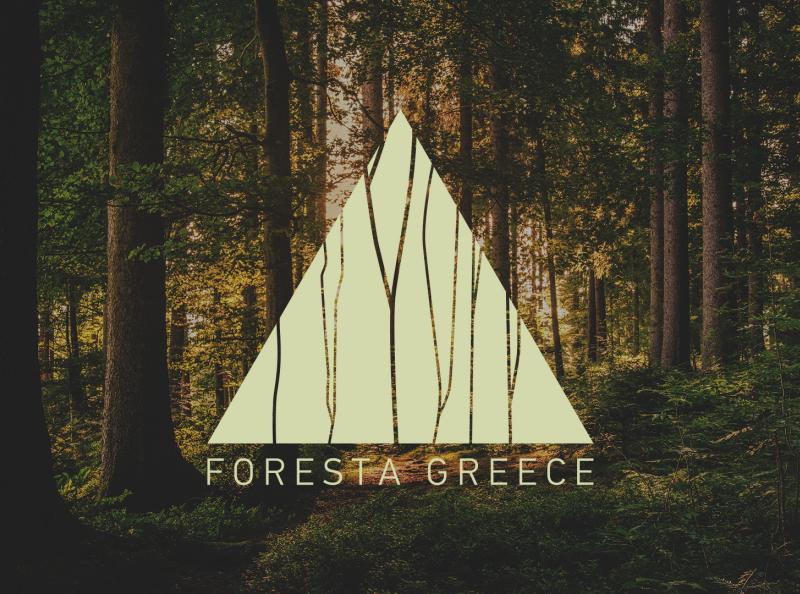 Foresta Greece: Visual Identity Design ui design ui logo design logo identity design branding strategy branding design branding brand identity