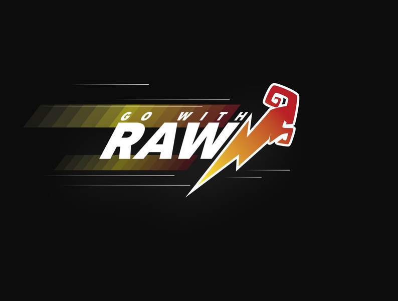 Go With Raw corporate branding corporate identity logodesign designer design branding design branding and identity uixu ui logos logo identity visualidentity brandidentity branding