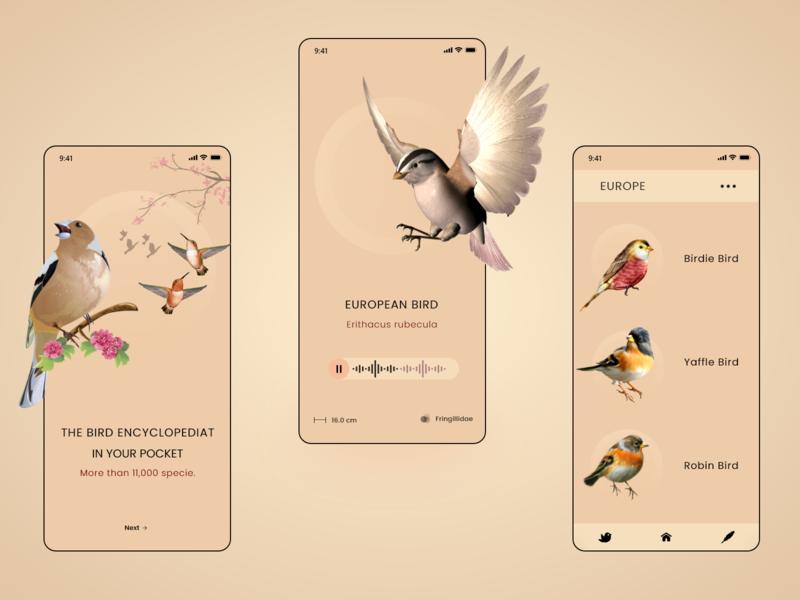 Birds Guide App app ux ui design