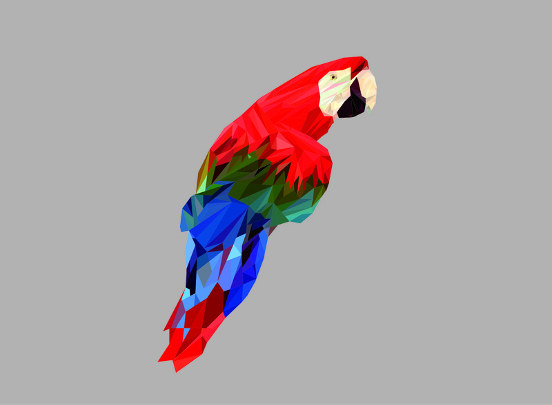 bird illustration 3d art cockatoo low poly line cockatoo vektor cockatoo bird vektor kaka tua kakak tua bird of paradise vectorart vektor lowpolygon low poly lowpoly lowpolyart bird low polyline bird icon bird illustration bird birs