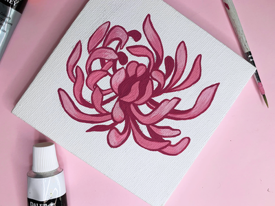 Pink chrysanthemum painting flower design process pink chrysanthemum plants flowers paint illustration