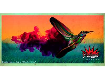 Magic Humming Bird hummingbird birds illustrator photoshop magic colorfull