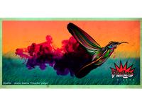 Magic Humming Bird