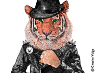Tiger with Black Jacket.