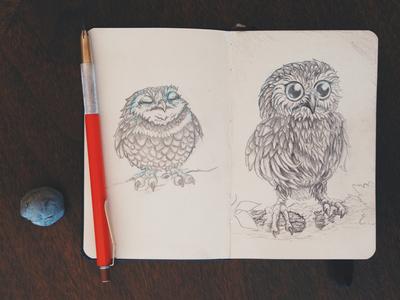 Owl Sketches sketch sketch book owl graphite illustration moleskin