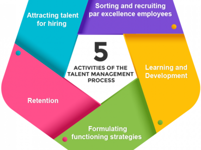 A Complete HR Guide To Talent Management In 2020 cutehr branding vector illustration talent management strategies talent management