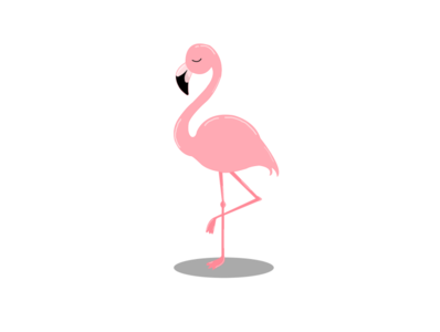 Flamingo character design designing graphic illustrator adobe photoshop art amateur art amateur illustration artwork artistic digitalart design artist