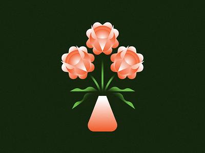Roses houseplant simple illustration botany plant flowers roses rose