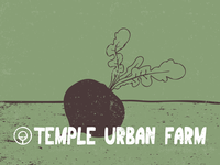 Temple Urban Farm Identity