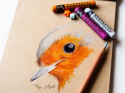 Robin Bird corporate art production concept layout presentation design pencil art colored pencil oil pastel illustration artwork
