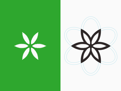Phenotonic Icon logo icon sacred geometry flower of life seed of life flower leaves leave geometry
