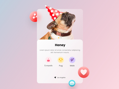 Animal Profile Card figmadesign figma 2021 trend design ux ui profile design profile card card profile dog animal glassmorphism