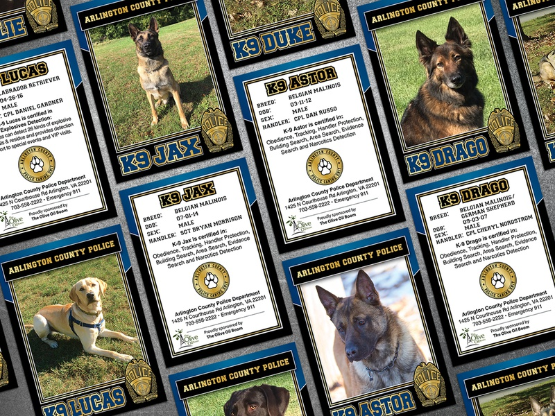 Arlington K9 Trading Cards creative business graphic design brand typography identity dog police branding business card trading card design