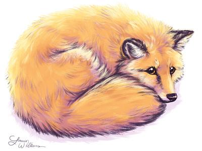 Fluffy little fox children book illustration portrait cute illustration photoshop art cute animal illustration animal art foxes digital painting fox