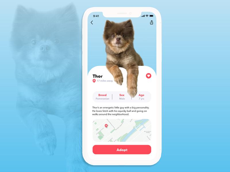 DAILY UI 006 - USER PROFILE - Dog Adoption App typography pet care uidesign uxui ux design app design dailyuichallenge dailyui daily 100 challenge product design dog