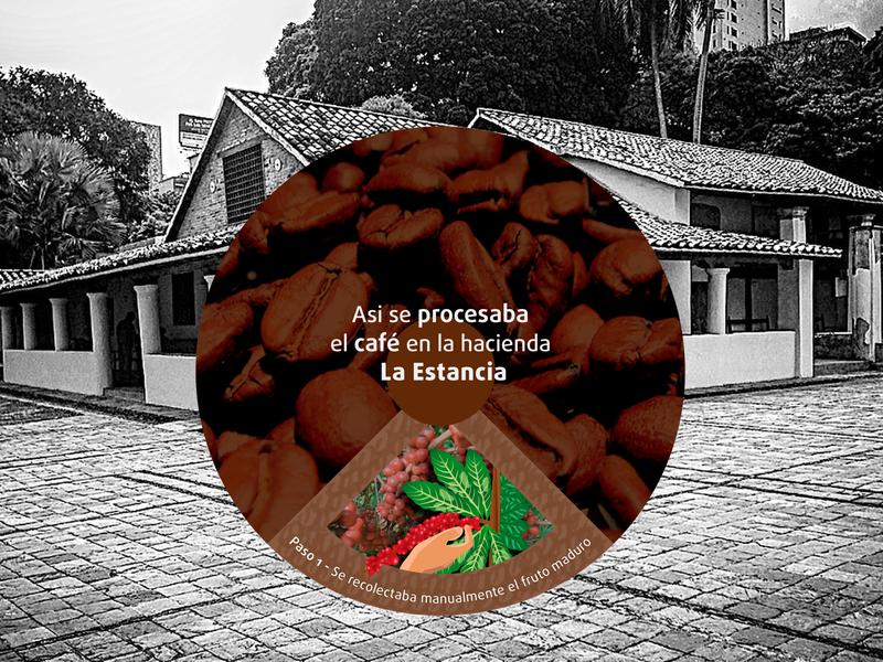 Proyecto Señalética Hacienda La Estancia diseño de flyer infograph diseño gráfico illustration café