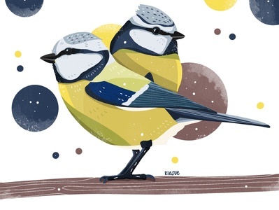 Blaumeisen drawing applepencil ipadpro procreate drawing procreate illustration procreate art procreate kiasue illustration bird illustration birds bird