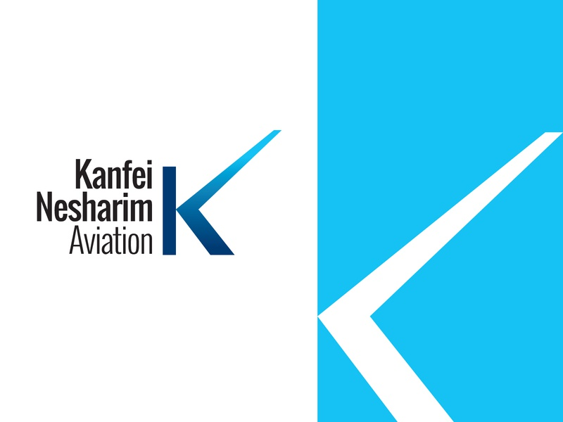 aviation logo minimal brand design logo branding