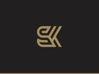 sk illustration web vector minimal flat ux ui logo icon design branding app