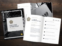 SBI Pricing Strategy Print Book/Magazine