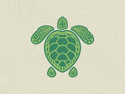 Loggerhead Sea Turtle Illustration flat design art digital animal turtle branding vector design logo flat illustration flat illustration