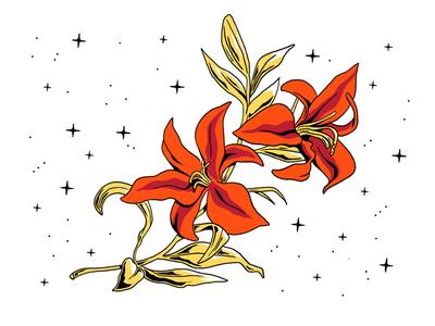 Golden Flower golden flower lys fleur