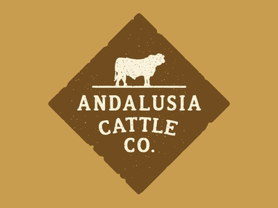 Andalusia Cattle Co. Main Branding southern brand cattle logo illustration florida halftone def