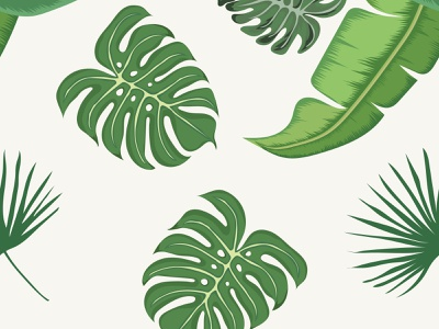 tropical leaves seamless pattern Premium Vector spring flora summer fern cannabis flower illustration foliage abstract branch floral tree pattern white isolated leaves nature plant green leaf
