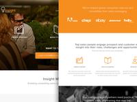 Web, UI and Brand work