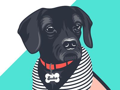 Sadie dog illustration dog vector flat branding design illustration