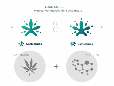 Logo exploration. CostcoBuds.