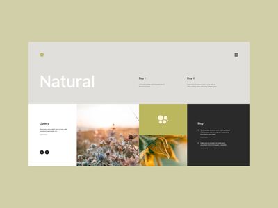 Plant care blog - Design typography ui ux web minimal design