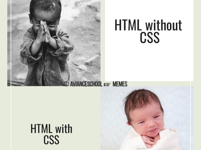 HTML with CSS Vs without CSS