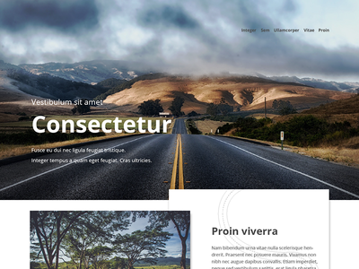 Website template template web