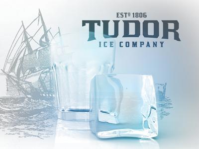 Tudor Ice ice illustration branding 3d modeling