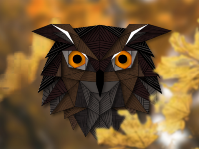 Owl illustrations vector design
