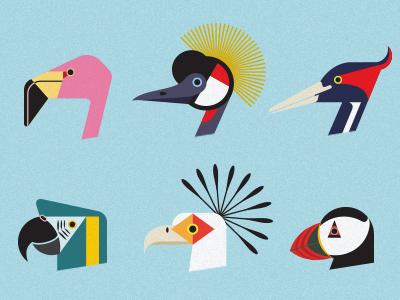 Endangered Birds illustration bird endangered icon geometric flamingo crane puffin