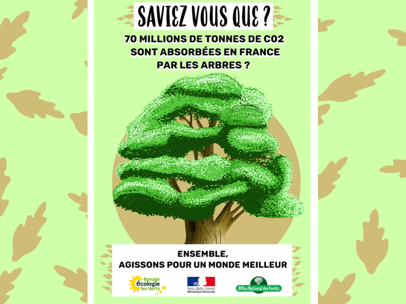 affiche fictive pour la défense des forêts ecosystem enviroment ecology tree earth flyer illustration